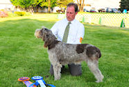 2010 National Specialty Best of Breed:
